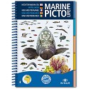 Guida Marine Pictolife Mar Mediterraneo