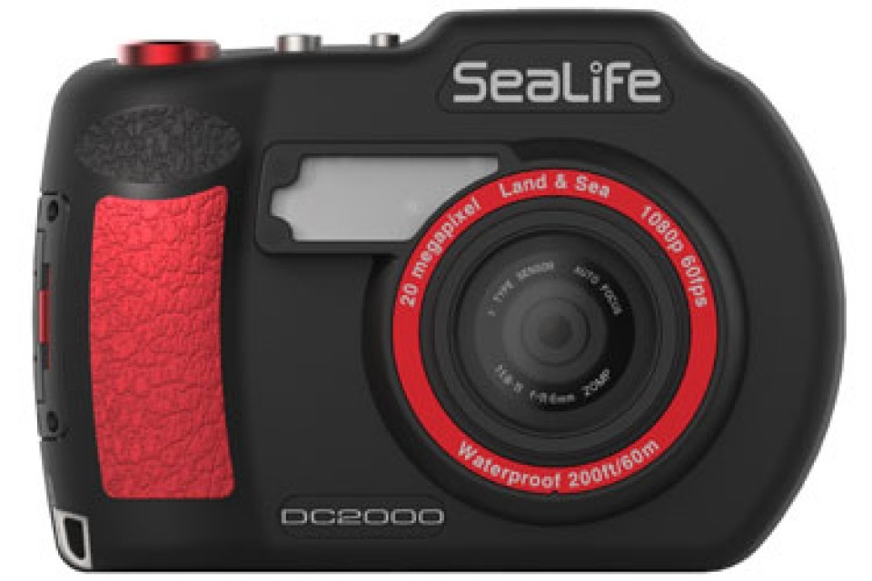 Action Camera Subacquea : Acquasub sealife dc fotocamera subacquea sealife dc